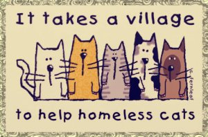 Foster homes are an essential part of the rescue community. Without them, many rescue groups are forced to turn away homeless pets.