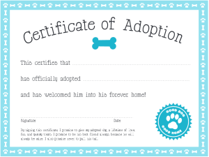 Make it official! Many adoption groups include congratulatory 'Adoption Certificates' to make the adoption official.